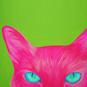 Animals Canvas Art